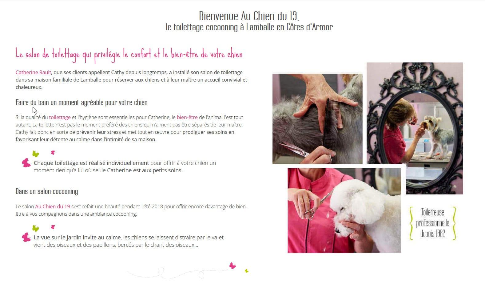 Page accueil du site Au Chien du 19